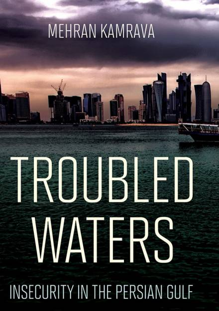 Book cover of Troubled Waters: Insecurity in the Persian Gulf by Mehran Kamrava.