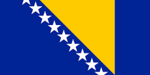 Bosnia and Herzvegonia flag